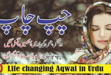 Photo of Chup chap urdu quotes and poetry with images