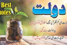 Photo of doulat 16 best urdu quotes with images
