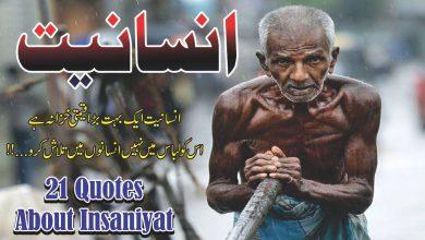 Photo of Insaniyat 21 best life changing urdu quotes