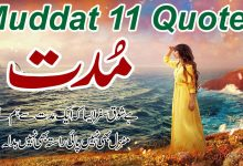 Photo of Muddat urdu quotes with images ||best aqwal e zareen