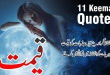 Photo of Keemat 11 best urdu quotes