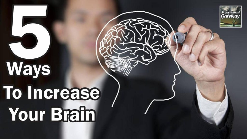 5 Ways To Increase Your Brain