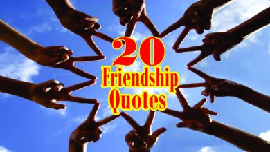 Photo of True Friendship quotes and inspiring quotes