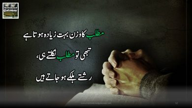 Photo of Urdu motivational quotes!!