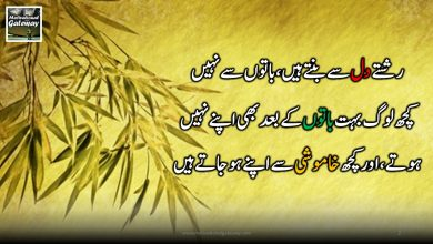Photo of Motivational quotes in urdu !