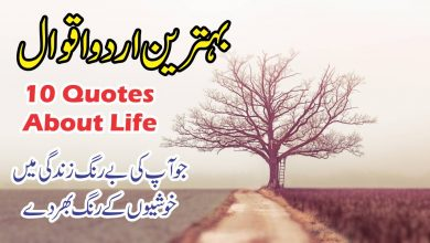 motivational top ten quotes in urdu with images, most powerful quotes,hindi urdu quotes,quotes about life
