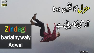 Photo of Inspirational Quotes in Urdu!!