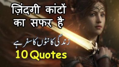 Photo of Life changing Hindi,urdu  quotes!!