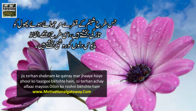 Photo of Life changing quotes in Urdu