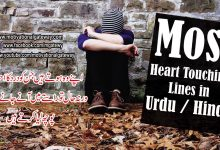 Photo of Most Heart touching lines in Urdu and Hindi!!