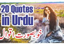 Photo of 20 best quotes about life in urdu