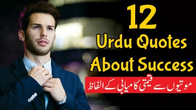 Photo of 12 Urdu Quotes About Success