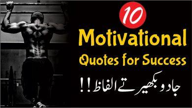 Success quotes in Urdu
