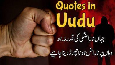 Quotes in urdu, Urdu qutes 2020