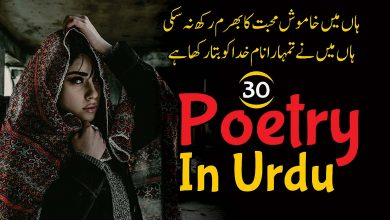 Photo of 30 Best Poetry In Urdu