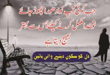 Photo of Modern urdu quotes