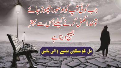 Photo of Modern urdu quotes