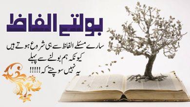 Photo of golden words in urdu