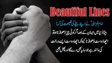 Photo of Beautiful lines in urdu