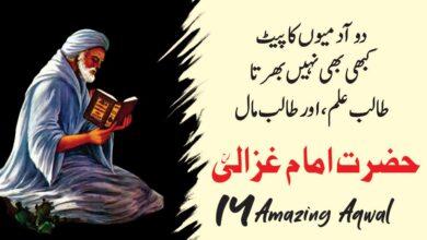 Photo of Imam Ghazali aqwal