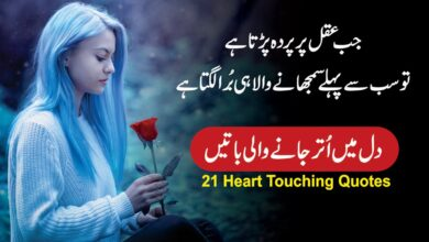 Photo of Heart touching aqwal