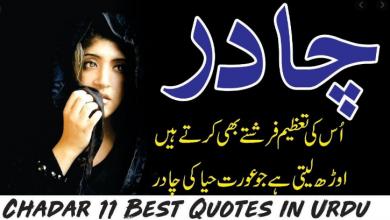 Chadar 11 best motivational quotes